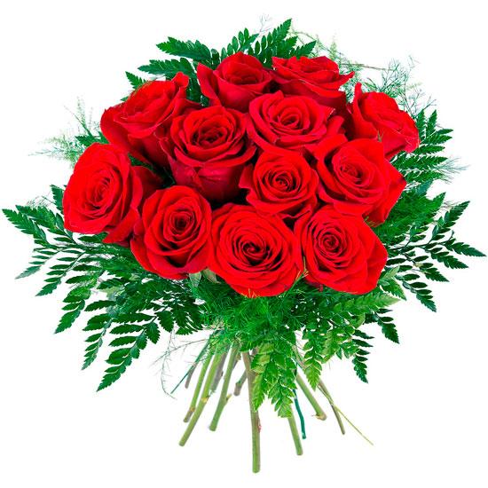 Docena de rosas para mi novia